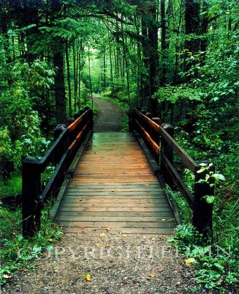 Wooden Bridge, Sundell, Michigan – Color