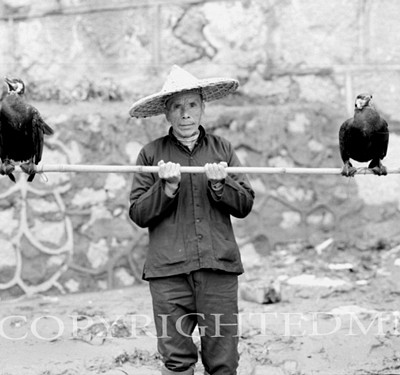 Man With Cormiers, China 91