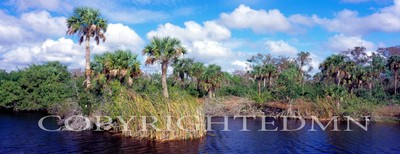 Everglades Panorama, Florida 07 - Color Pan