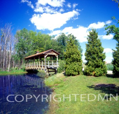 Covered Bridge, Pond & Trees, Walled Lake, Michigan 06 - Color