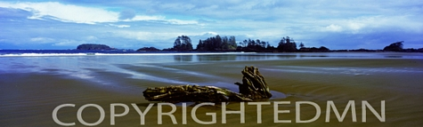 Chesterman Beach Panorama, Vancouver, British Columbia 07 - Color Pan