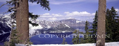 Crater Lake & Trees, Oregon