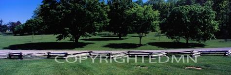 Bernheim Arboretum Panorama #2, Kentucky 08 - Color Pan