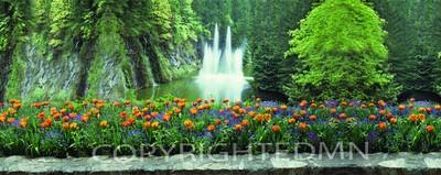 Butchart Gardens Fountain Panorama, Vancouver, Bristish Columbia 07 Pan - Color