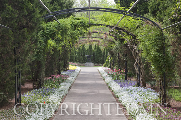 Archway Amp Path Nashville Tennessee 10 Color Fine Art