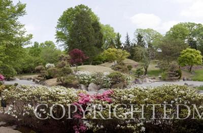 Cheekwood Gardens Panorama #2, Nashville, Tennessee 10-Color