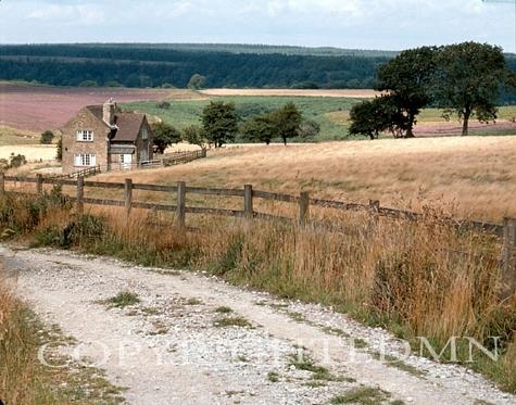 Farmhouse & Meadow, Europe
