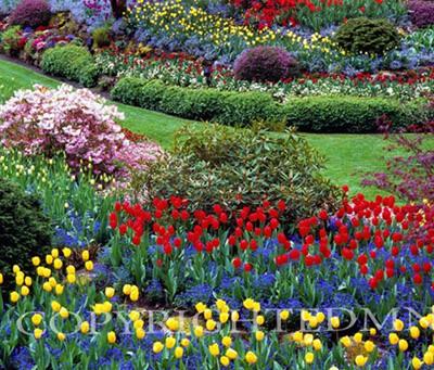 Butchart Gardens #5, Vancouver, British Columbia 07 - Color