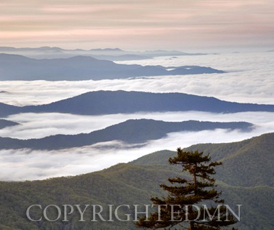 View from Clingmans Dome #2, Great Smoky Mountians, Virginia - Color