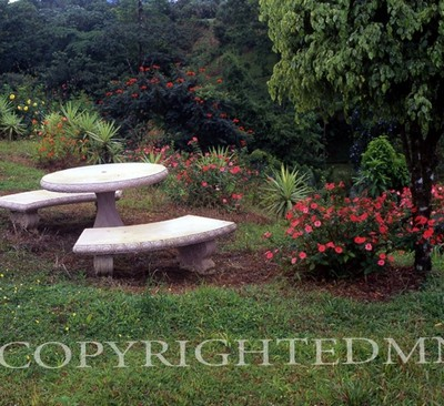 Benches And Table #1, Costa Rica 04