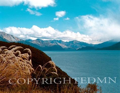 Ocean Coast, New Zealand 98