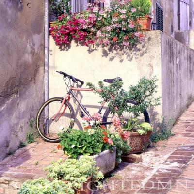 Bike Among The Flowers, Italy 01