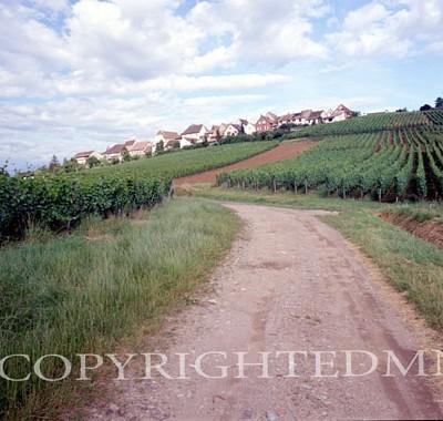 Roadway, Zellenberg, France 99