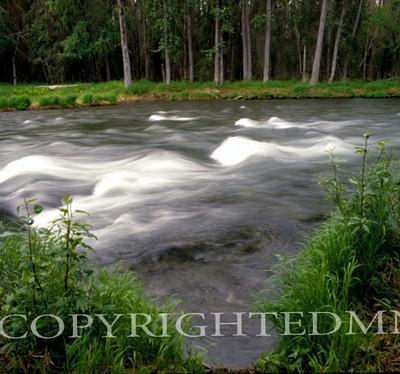 Russian River #1, Alaska 85