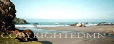 Shore #2, California