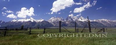 Tetons & Fence, Jackson Hole, Wyoming 95