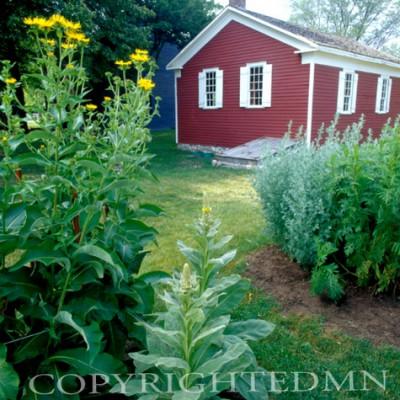 Red Barn, Michigan 06 - Color