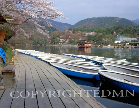 Blue Boats, Kyoto, Japan 05 - Color