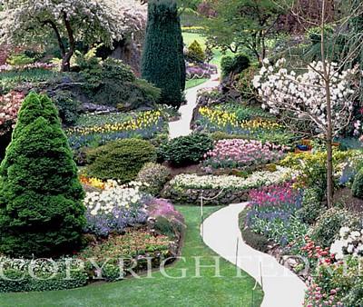 Butchart Gardens & Path, Victoria, Canada - Color