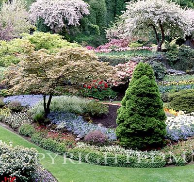 Butchart Gardens, Victoria, Canada - Color