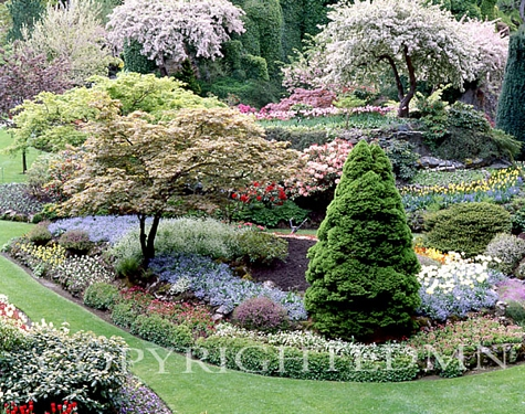 Butchart Gardens, Victoria, Canada - Color - Fine Art Photography