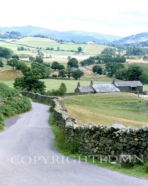 Country Road, Lake District, England - Color