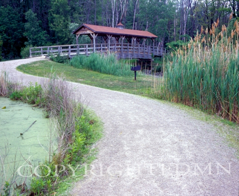 Covered Bridge & Path, Walled Lake, Michigan 06 - Color