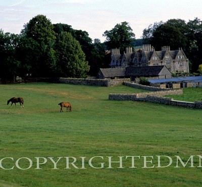 Chateau & Horses, Wales 89