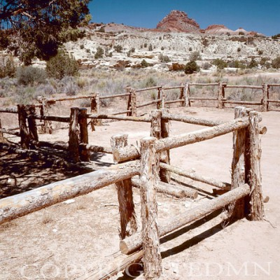 Fence In Prarie, West - Color
