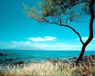 Hawaii #14 - Color