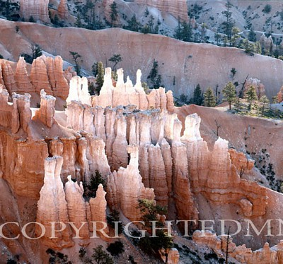 Hoodoo Formation, Bryce National Park, Utah - Color