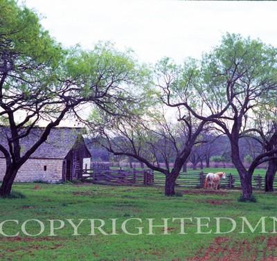 Texas Ranch, Johnson City, Texas 07 - Color