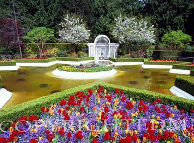 Butchart Gardens #6, Vancouver, British Columbia 07 - Color