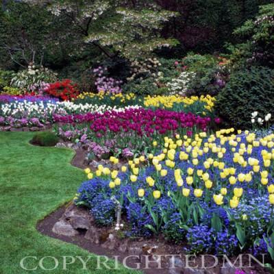 Butchart Gardens #8, Vancouver, British Columbia 07 - Color