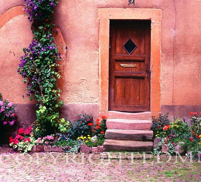 Wooden Door And Steps, France 99 - Color