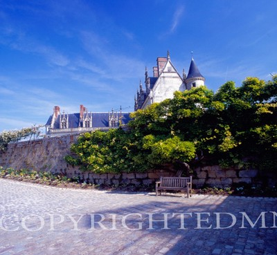 Amboise Chateau, Amboise, France 07 - Color