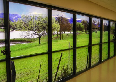 7' x 36' Window Art Panels