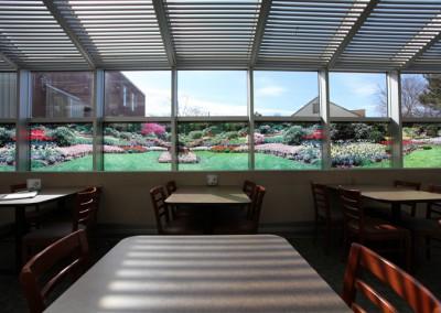 Window-Art-in-Cafeteria