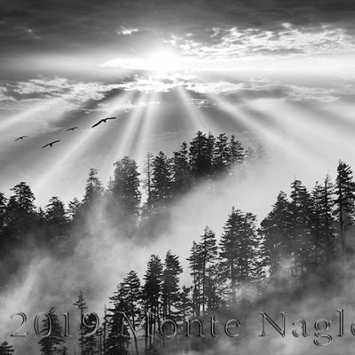 Smoky Mountain Sunrise, Great Smoky Mountains, Tennessee '13