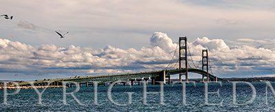 Mackinaw Bridge, Pan, Mi.'18