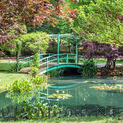 Monet Bridge at Gibbs Garden #2, Ball Ground, GA, '19