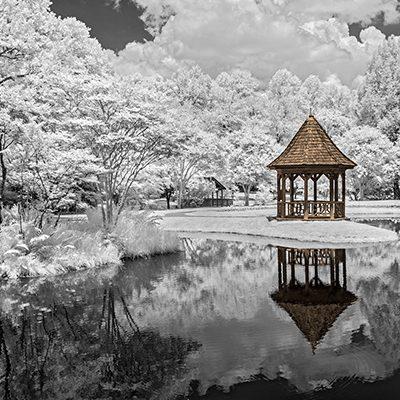Pagoda, Gibbs Garden, GA, '19 IR Tinted 15.5