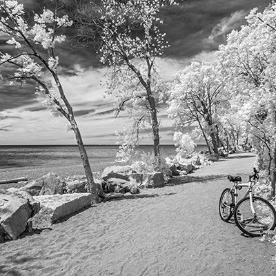 Bicycle at Point Pelee, Leamington, Ont, '19 IR