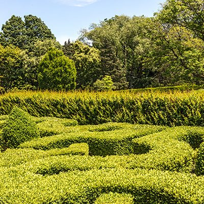 Green Hedges, Hamilton, Ont. '19