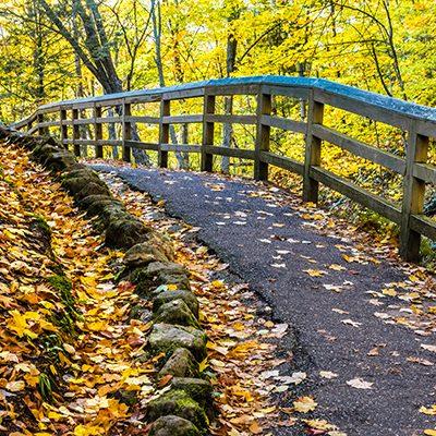 Pathway with Fence, Munising, MI, '19